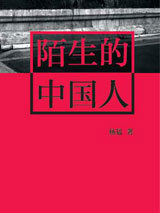 陌生的中国人封面图片